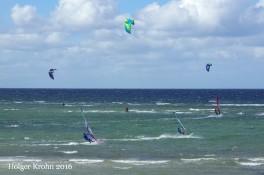 Heidkate - Surfer 7047