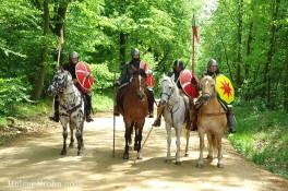 Kavallerie - 8832