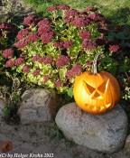 Halloween - Arche Warder