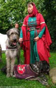 Irish Wolfhounds I