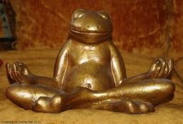 Frog Meditation I