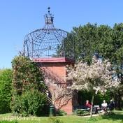 Botanischer Garten Kiel - 1165