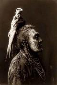 Crow - Haarschmuck