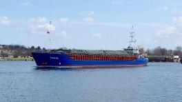 dolfijn-ms-4228