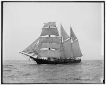 Ethel V. Boynton 1899