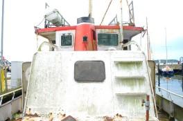 Zwaardvis - 4236