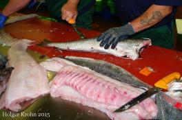 Fisch zerlegen - 5561