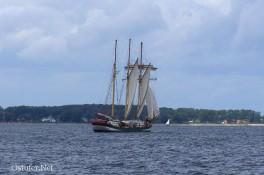 Holländer III