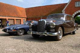 Jaguar & Mercedes - 3514