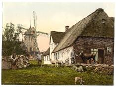 Sylt - Munkmarscher Mühle