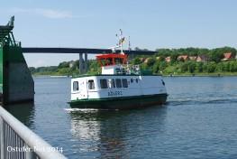 Adler I - 0425