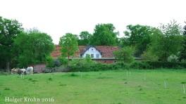 Gut Ascheberg - 9069