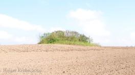 Schlesen - Hügelgrab 8952