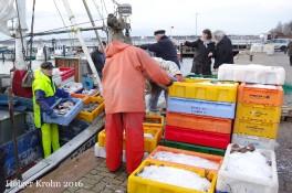 Fischfang - 4785