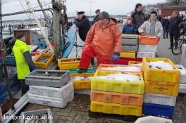 Fischfang - 4792