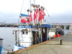 Fischkutter Kulle Christoph - 7891
