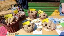 Kartoffeln - 2100