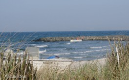 Schönberger Strand - 9161