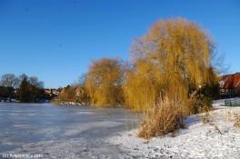 Kirchsee - Neujahr 2011 I